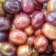 Olives noires de Volos