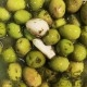 Olive verte + ail confit