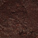 Tapenade Noire aux figues